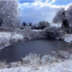 Winters Frosty Pond