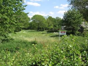 Village Field 1web