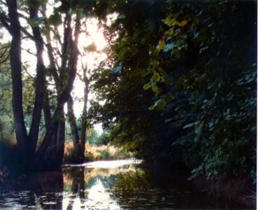 A Summer's Evening On The Glebe (U16)