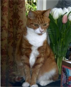 Elgar in Pensive Mood