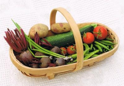 Starston Produce
