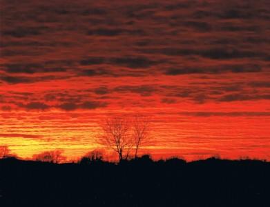 Starston Sky On Fire